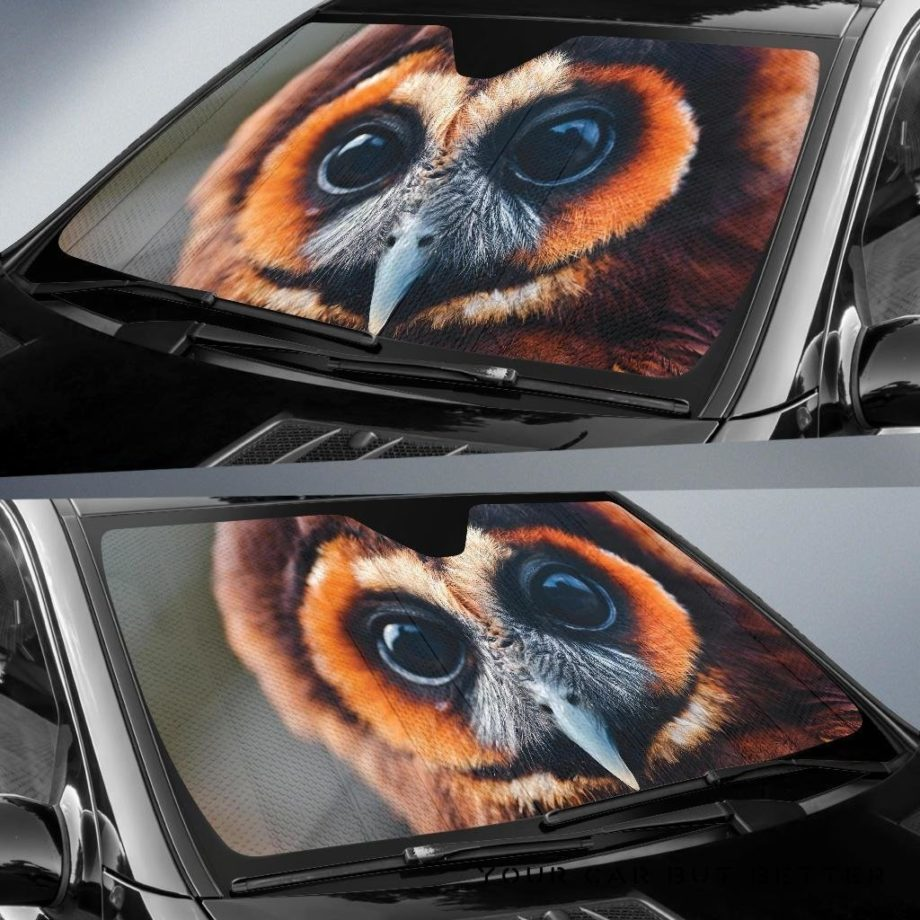 Great Owl Eyes Car Auto Sun Shades 230916
