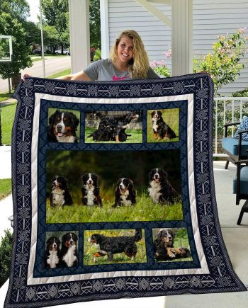 Bernese Mountain Dog 7 Quilt