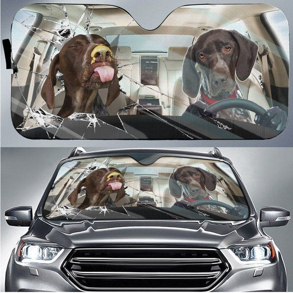 Shorthaired Pointer Auto Car Sunshade 26VT KWP323